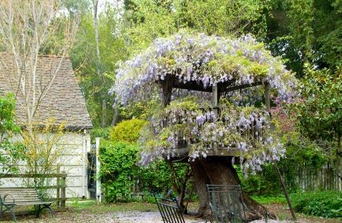 De Magische Boomhut : De magie van de boomhut unifynl s